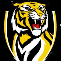 TigerManQ